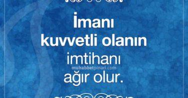 Muhabbet Pınarı