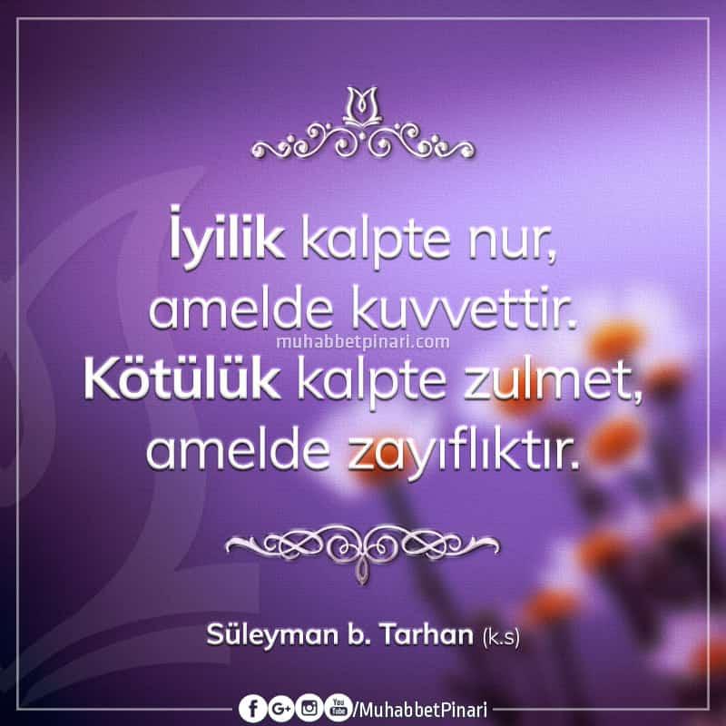 Süleyman bin Tarhan Hazretlerinden Hikmetli Sözler